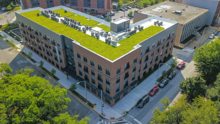 green roof website project
